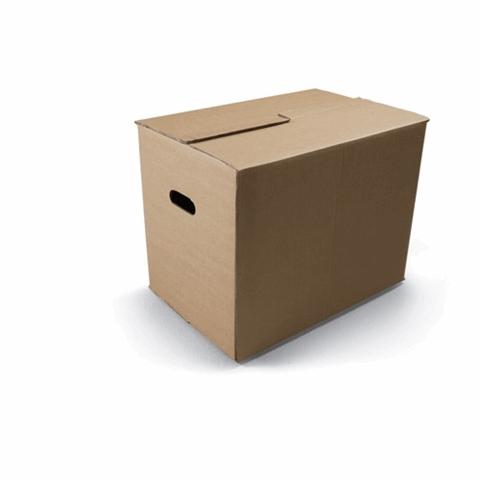 "Verhuisdoos ""verhuisbox professioneel"""